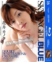 SkyAngel Blue Vol.16 (Blu-ray Disc)