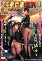 The Cabin Attendant And The Airplane Pervert 6 Deluxe Edition Creampie Specials